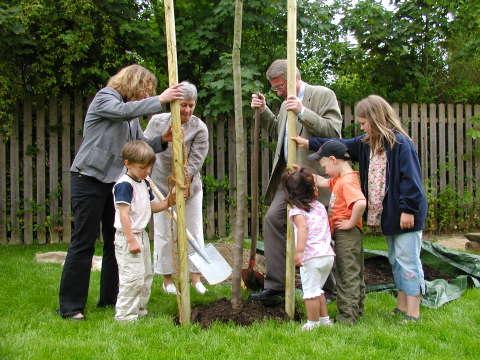 Bürgermeister Alfred Baxmann, Christiane Gersemann, Vorsitzende des Jugendhilfeausschusses und Doris Zander pflanzen mit Nils, Didem, Chris und Rieke den Apflebaum
